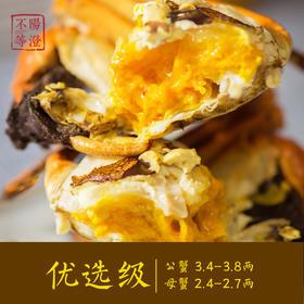 【大闸蟹预售】阳澄不等 正宗阳澄湖大闸蟹  米其林餐厅之选 9.25开始发货