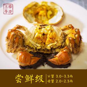 【现货+蟹卡】阳澄不等 正宗阳澄湖大闸蟹 米其林餐厅之选