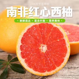 南非红心西柚 进口葡萄柚柚子 新鲜孕妇水果6个装