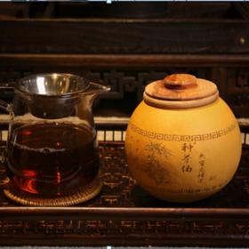 种茶伯 龙珠茶
