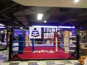 FIGHTBRO简易训练版擂台 B系列