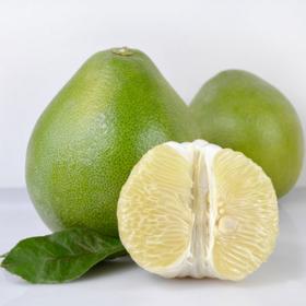 【南海网微商城】纯天然 海岛柚子 无籽青柚 饱满多汁 2个装