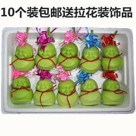 【美货】人参果果实水果 甜瓜 香瓜 娃娃瓜 脆 低糖 现摘新鲜果实 十个装