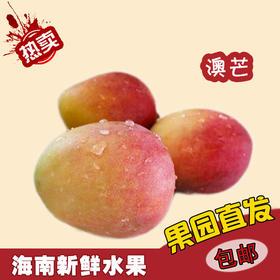 【南海网微商城】海南新鲜水果澳芒 8斤装