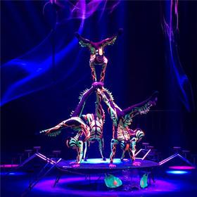 真好玩邀请你去南京看皇家国际大马戏,简直震撼到爆,你不来两张?