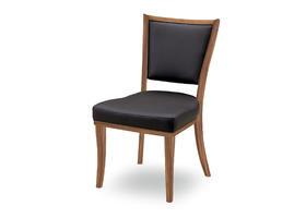 WAL LIFE WC-004 餐桌椅