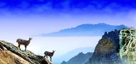 """""""塞上江南、神奇宁夏"""",沙漠穿越之旅—— 宁夏 沙漠探险、亲子游学 双飞5日游"""