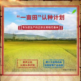 一亩五常稻花香米田认种