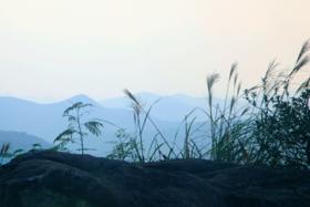 【国庆】10.3寻踪悠远的岗墩古道,登慈溪第一高峰塌脑岗(1天活动)
