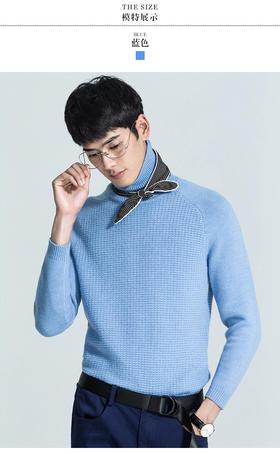 68ZZ09-001-489男士高领套头纯羊毛衫针织衫【24小时限时抢购】