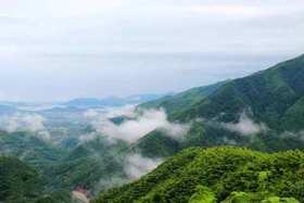 11.5徒步四明山宋代古道,探寻隐藏在山顶的世外桃源(1天活动)