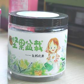 【坚果自然盆栽】