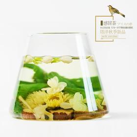 【养生组合茶 】感冒茶