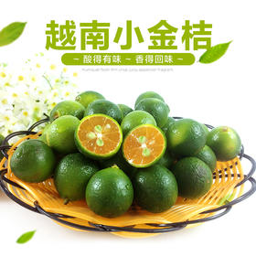 【越南进口】越南柠檬小金桔 新鲜进口水果  青金桔小柠檬 皮薄多汁3斤装、5斤装包邮
