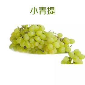 【果果生鲜】新鲜青提 一斤 两斤装