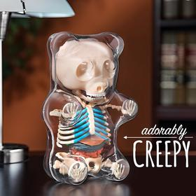 Jason Freeny 经典软糖小熊 全透视解剖骨骼内脏 可拆卸 公仔手办