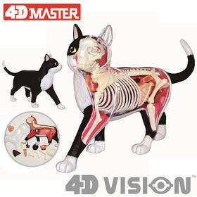 4D MASTER 猫拼装玩具 动物模型 半透视解剖骨骼内脏 可拆卸模型 手办