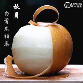 【梨中贵族】山东莱西秋月梨 脆甜 果肉细嫩多汁 新鲜采摘  顺丰包邮到家