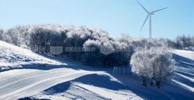 阿尔卑斯2017-18年雪季标准团