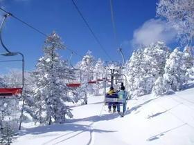 【17-18雪季早鸟行动 】 日本志贺高原爽滑粉雪