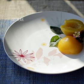 外贸 新骨瓷 植物花卉 大盘 水果盘 Brunch盘 意面盘 沙拉盘 满包邮