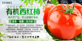 【好膳娘】农场直供有机西红柿5斤装(自提)