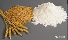 安和四季 原生态 面粉 中筋面粉 无添加