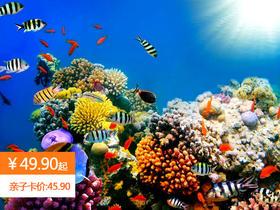 双11大促 | 罗源湾海洋世界最低仅需49.9元起!