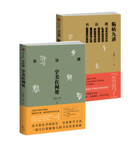 书法课(套装2册):临帖九讲+字美在何处