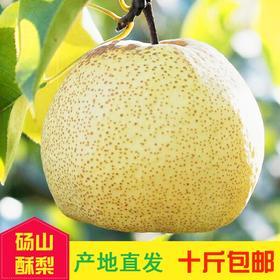 砀山酥梨--来自黄河故道--梨树王核心产区老树精选
