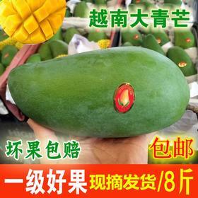 越南一级大青芒进口芒果老树肉厚甜蜜原产地过关5/8斤装包邮