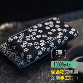 lepow乐泡淳 10000 毫安定制版充电宝便携聚合物移动电源手机通用 灰色 10000毫安