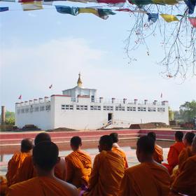 12月5日(订金)印度尼泊尔15天 蝉友圈佛旅网全景佛陀应迹朝圣