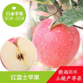 西安晚报推荐—陕西白水苹果果径80--85(3.5-4kg)【原产地直发】