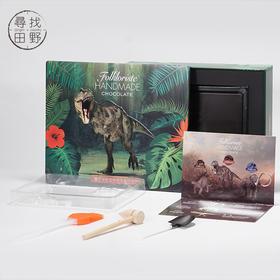 寻找田野|恐龙考古系列益智巧克力250g 儿童创意新奇礼品 开发智力 线下高端商超有售
