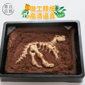 能吃的恐龙化石,用巧克力考古