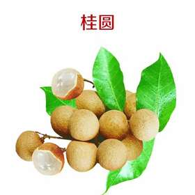 【果果生鲜】新鲜桂圆 一斤装