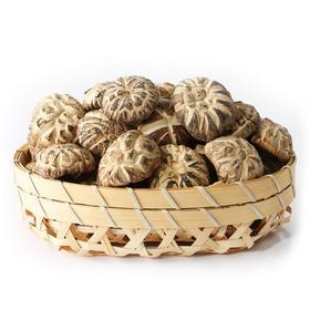 【伏龙山_春栽白花菇400克】神农架特产干货香菇椴木蘑批发包邮