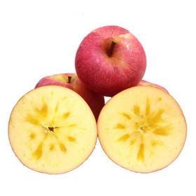 阿克苏苹果一件,14斤99包邮!