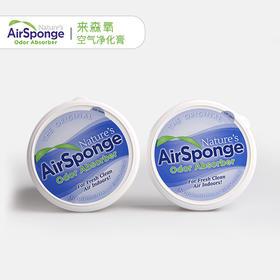 美国进口 Nature's Air Sponge空气净化膏