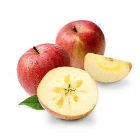 【离太阳最近,离城市最远,全年超过3000小时日照】凉山盐源丑苹果 爽脆 甜度高达16-19度 8斤装