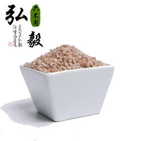 【弘毅六不用生态农场】六不用高粱米 老品种 红高粱 1斤/份
