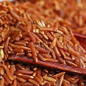 补血/红米 豆浆