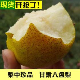 【美货】甘肃特产新鲜水果爱心梨农家自产爽脆酸甜八盘梨5斤