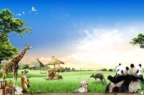【湖南】长沙生态动物园