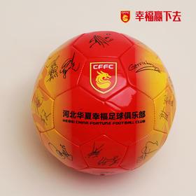 俱乐部签名足球(印制版)