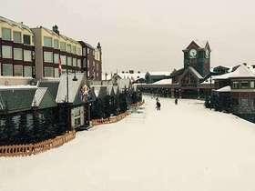 加拿大大白雪山11天9晚滑雪游