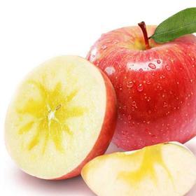 【顺丰包邮】新疆阿克苏红旗坡冰糖心苹果 来自新疆的礼物