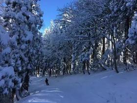 日本黑姬高原、斑尾高原雪场滑雪行程