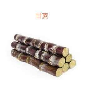 【果果生鲜】新鲜甘蔗 一根装  5~6斤左右